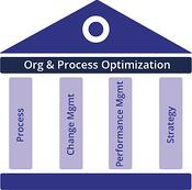 Org & Process Optimazation