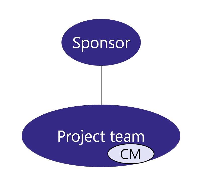 Team_Structure_A_CM_in_PM (1)