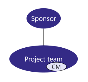 Team Structure - A Change management resource in side the project team
