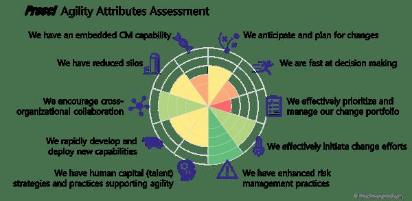 Agility_assessment_radar (1)