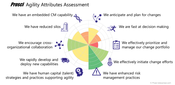 Agility_assessment_radar