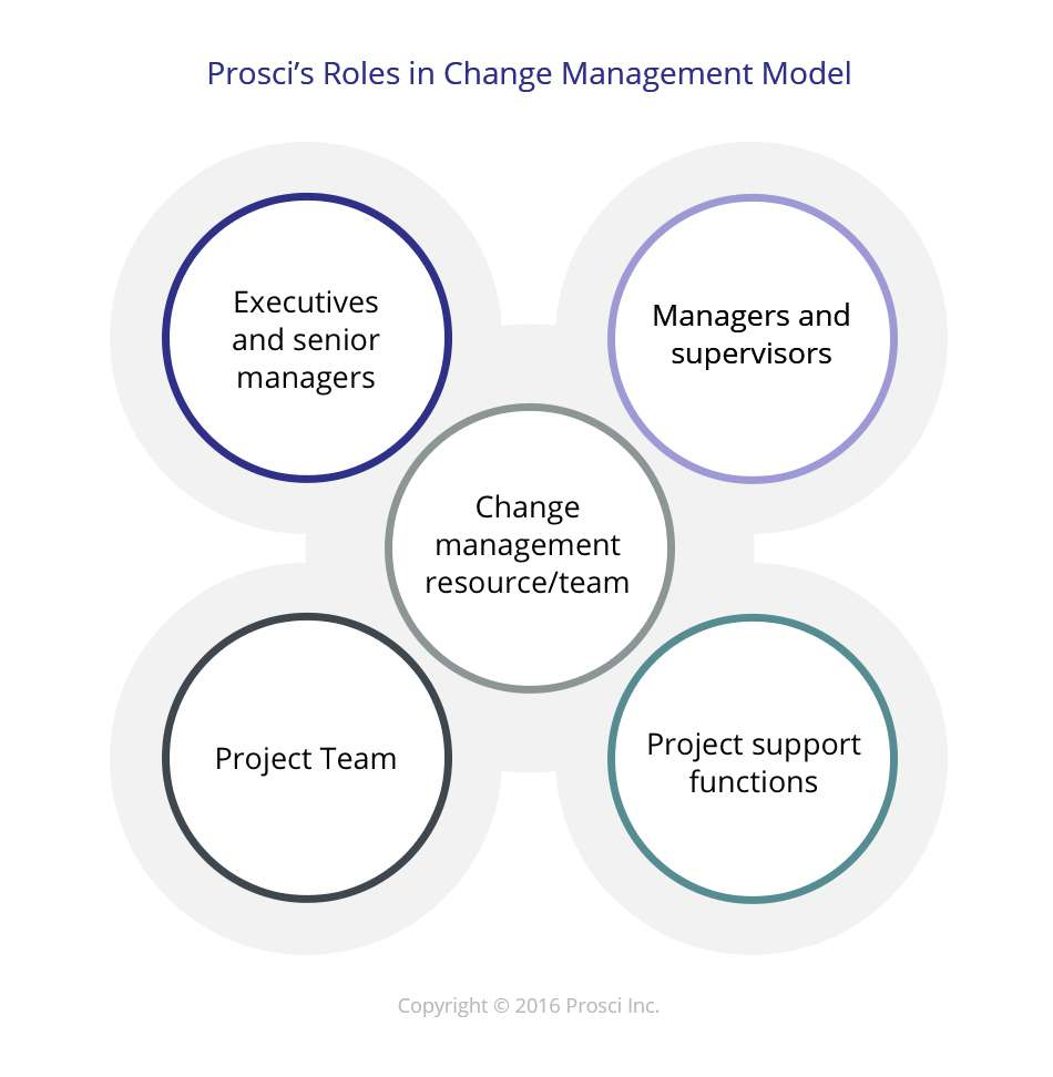 successfully restructuring an executive leadership team a case study in change management