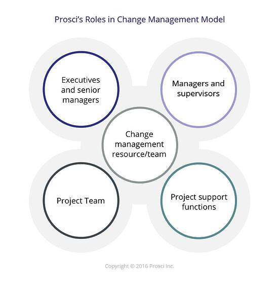 Roles_in_Change_Management